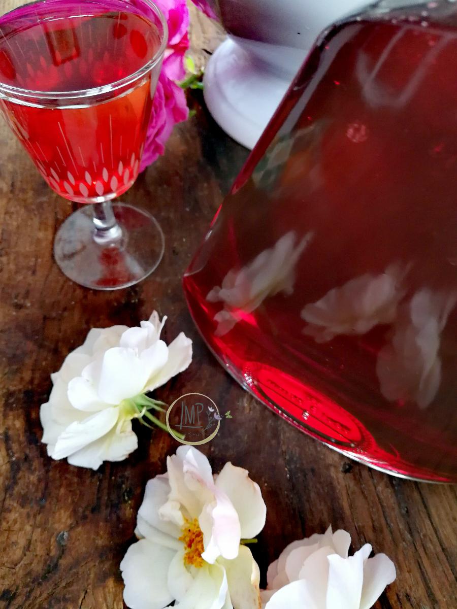 Sciroppo di rose e rosa Penelope