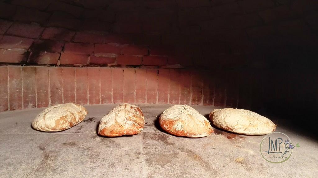 Pane Ciabatta nel forno a legna in cottura