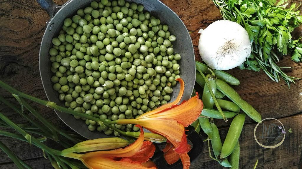Sugo di piselli, Ingredienti piselli, prezzemolo, rosmarino e cipolla