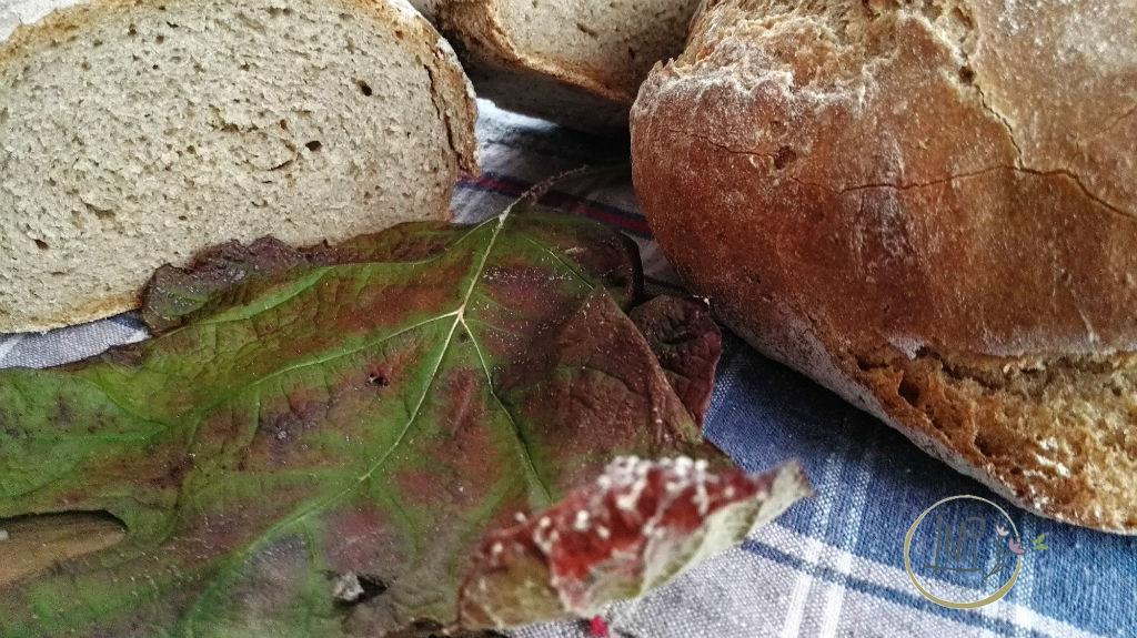 Pane di segale su canovaccio