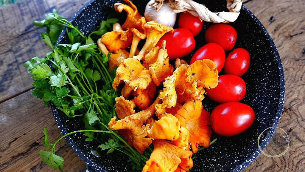 Funghi galletti con pomodoro Ingredienti in padella