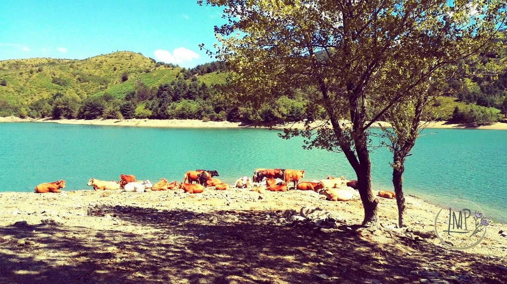 U Cabanin Lago di Giacopiane in Val d'Aveto