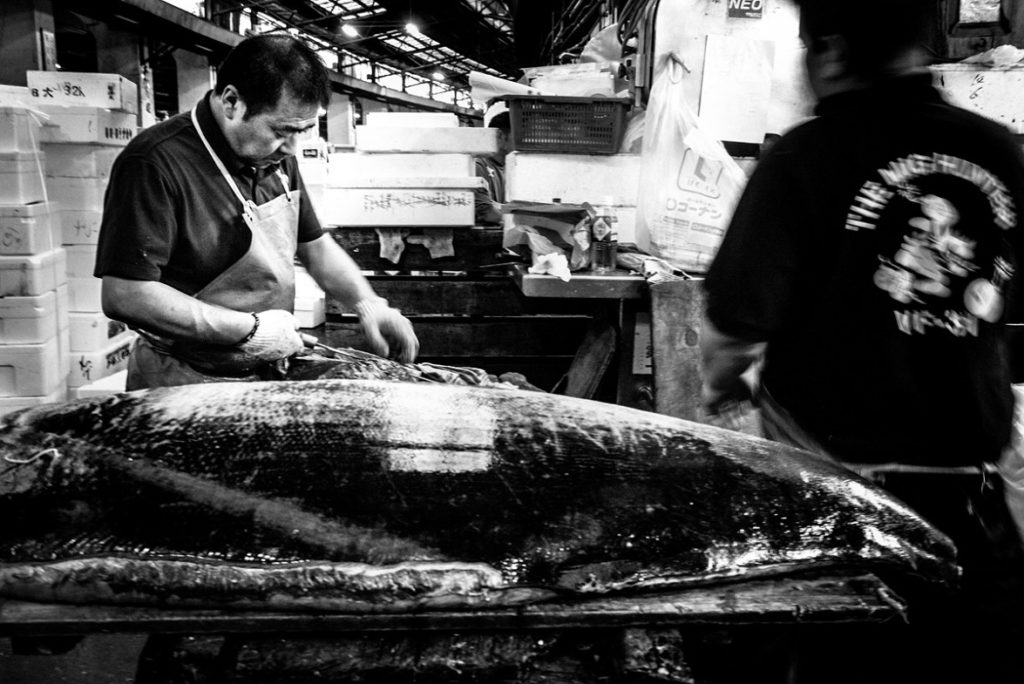 ©NicolaTanzini_TokyoTsukiji#25