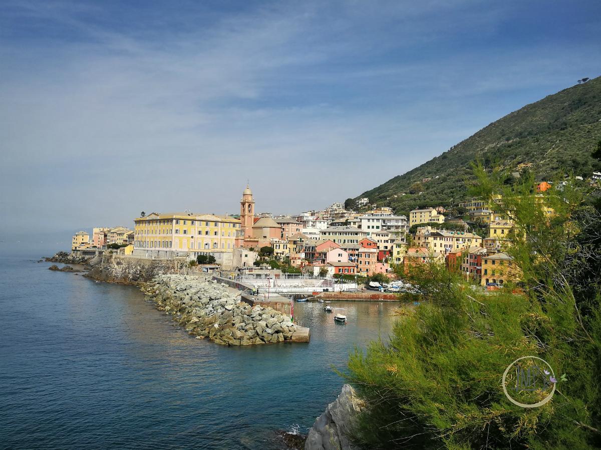 Nervi Riviera in città Progetto Alter Eco panorama