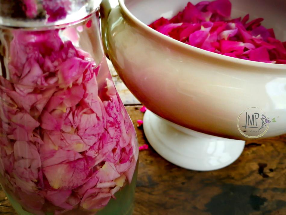 Acqua di rose petali in infusione appena messi