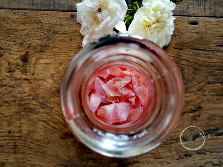 Bottiglia con petali in infusione dettaglio