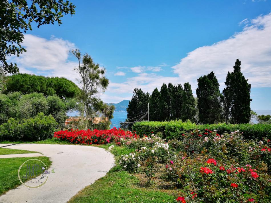 Nervi tra Arte e Natura parco veduta