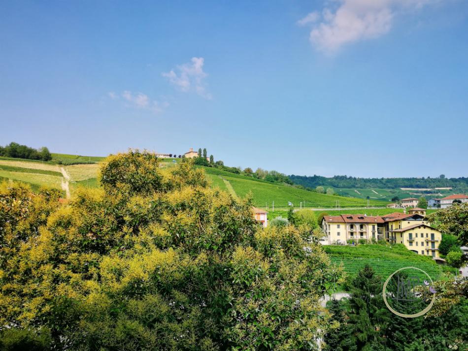 Barolo colline langhe