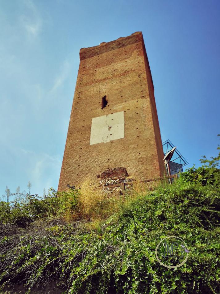 Langhe itinerari Barbaresco Torre