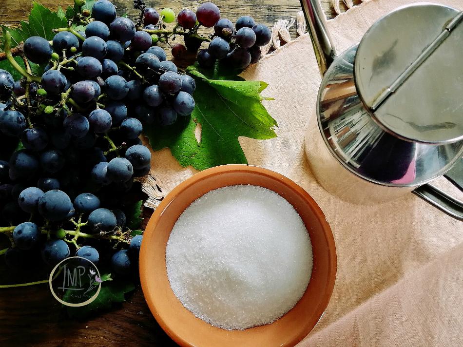 Ingredienti Schiacciata con uva fragola