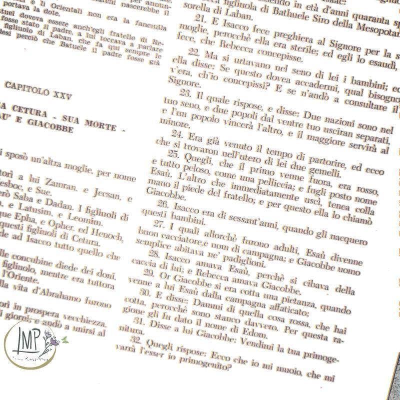 Antico Testamento, Genesi, Esaù e Giacobbe