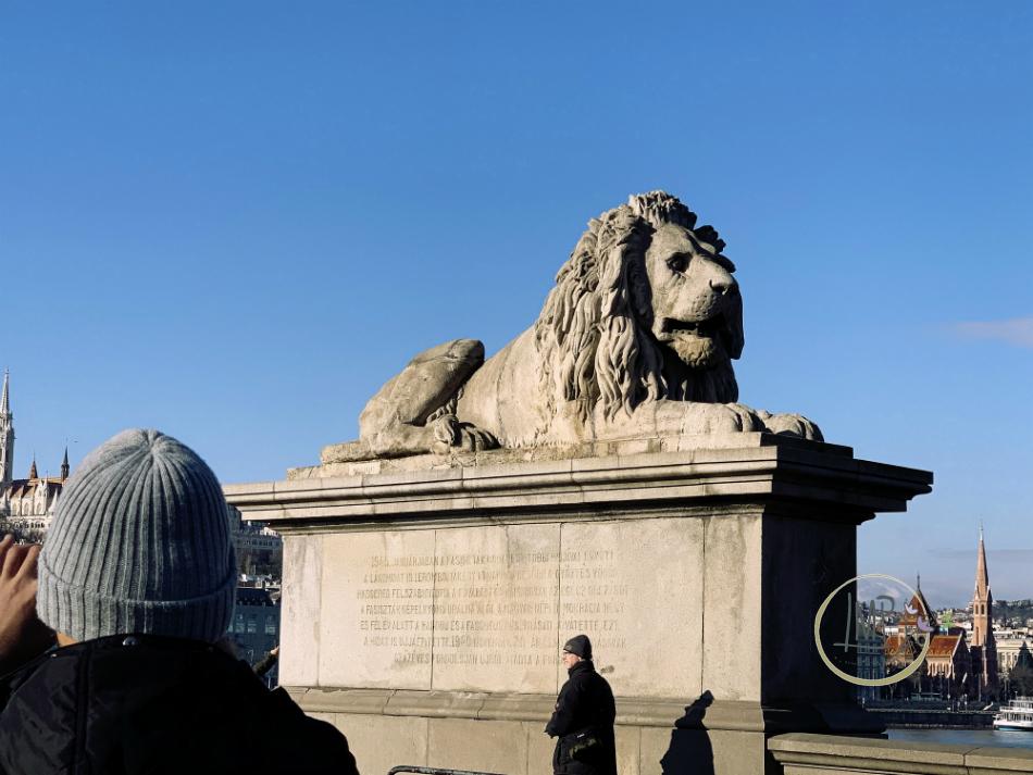 Ponte delle Catene Széchenyi Lánchíd dettaglio leone