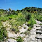 Sentiero per San Bernardo 2