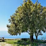 Vista dal Monte Santa Croce