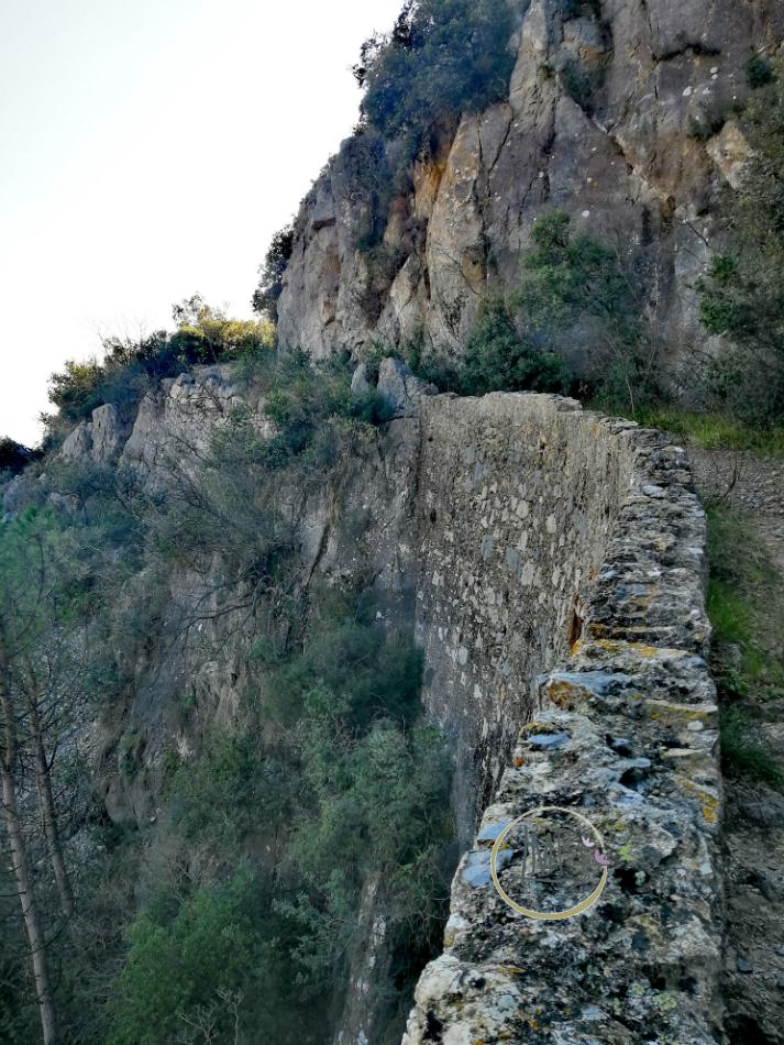 Muraglione lungo la Strada Napoleonica 9