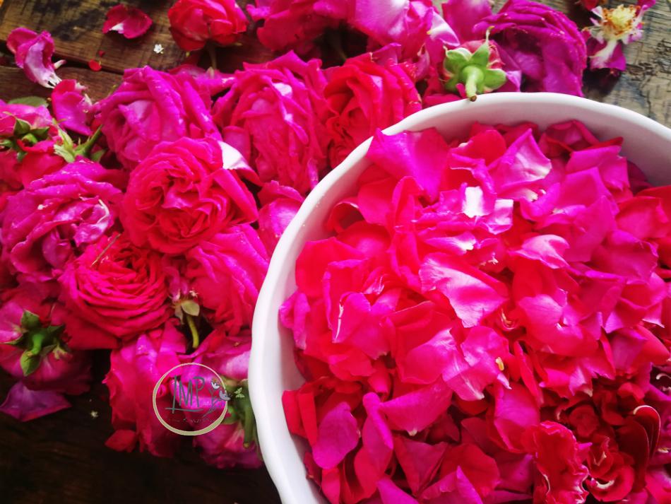 Preparazione petali per la confettura di rose