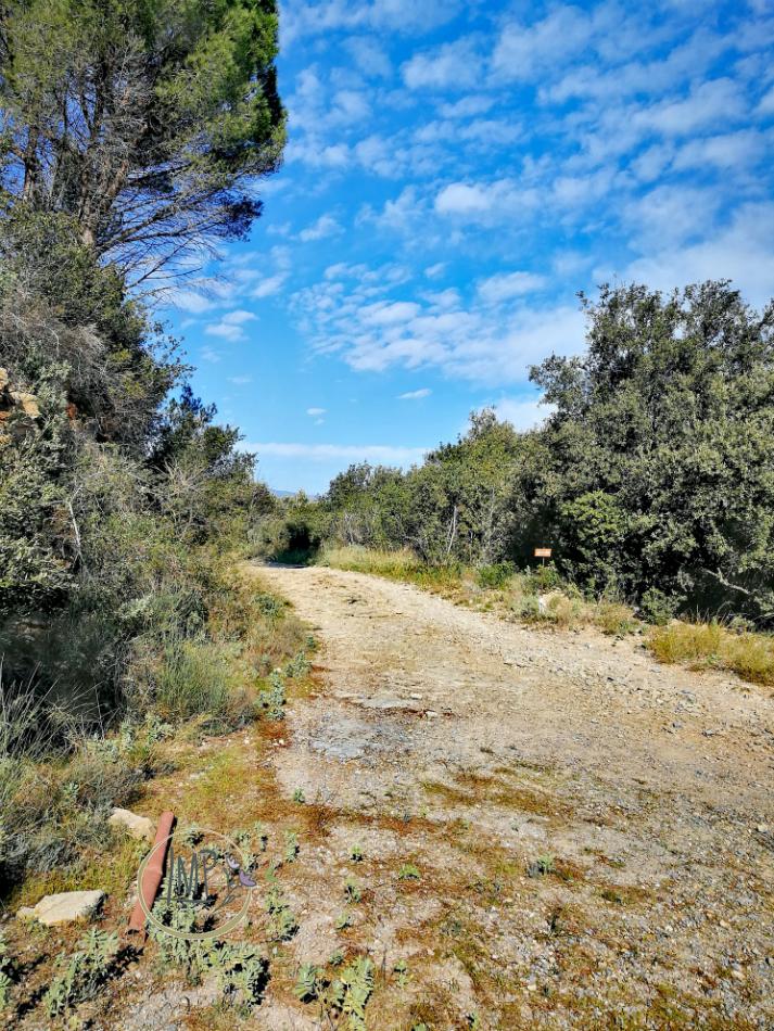 Strada Napoleonica verso Verezzi 14