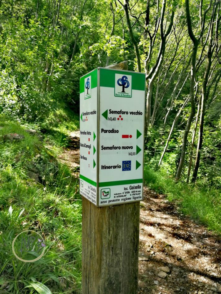 Sentiero per Semaforo Vecchio 20