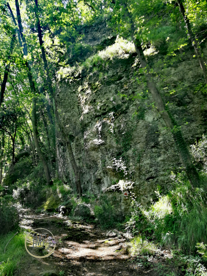 Sentiero per Semaforo Vecchio 23