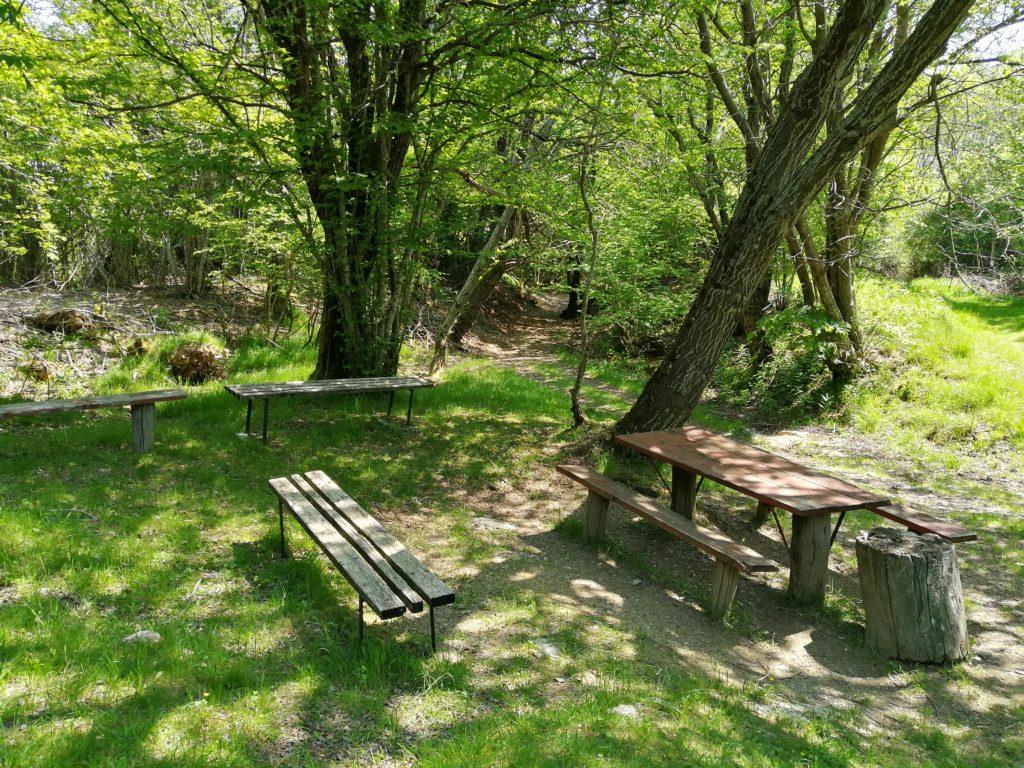 Sentiero per il Pian della Cavalla area picnic