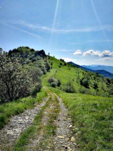Sentiero dei narcisi percorso breve